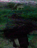 Аватар для Gector